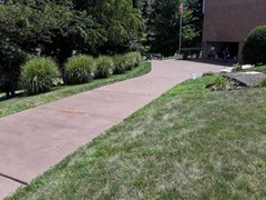 After pressure washing, this driveway had a brown semi-transparent stain applied to give the driveway the look the customer desired.